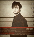 wanted harry