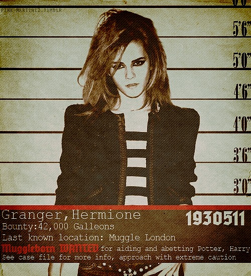 Wanted hermione lost between the letters - Harry potter hermione granger real name ...
